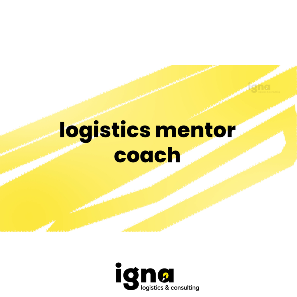 Jak wygląda współpraca z Logistics Mentor Coachem?